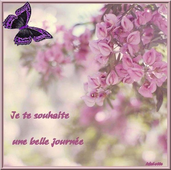 Je te souhaite une belle journée