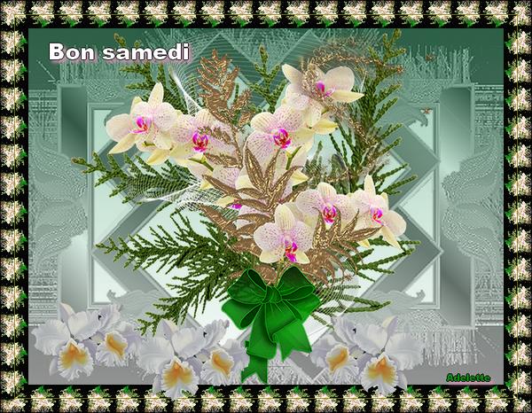 Samedi orchidées