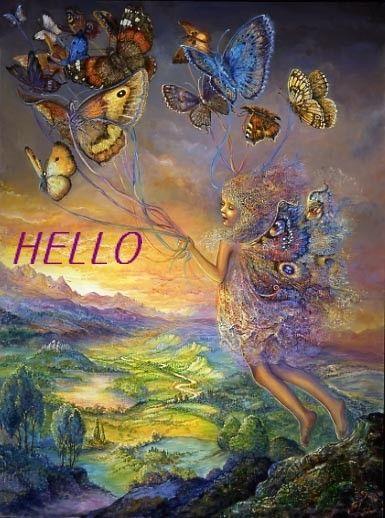 Hello papillon