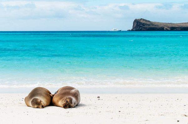 Belle plage à Bahia