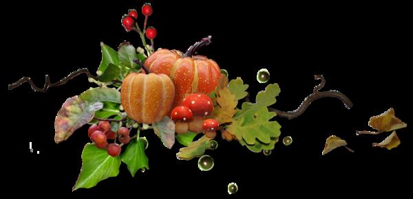 Résultat d'images pour Gifs barre de séparation automne