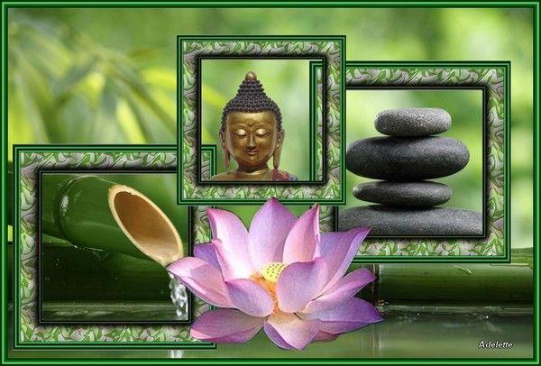 Montage Lotus