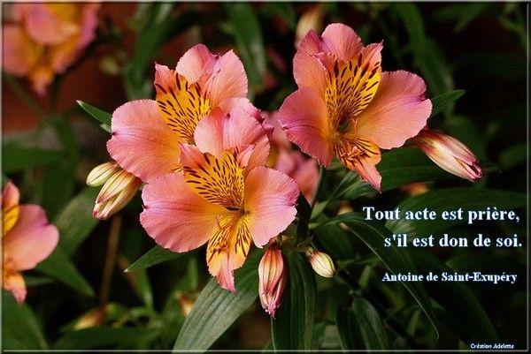 Tout acte est prière s'il est don de soi