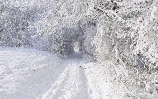 C'est l'hiver, la neige est là