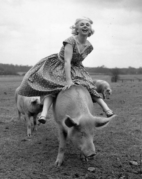 A saute-cochon