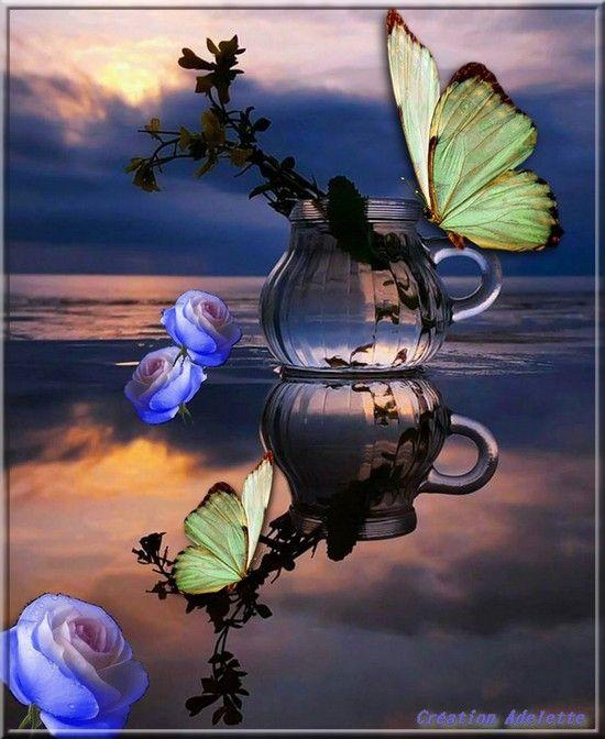 Papillon et vase