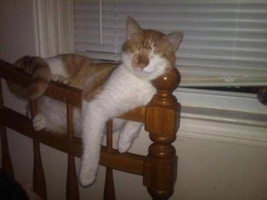 Pas très confortable