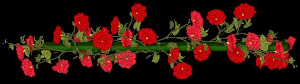 Barre de séparations fleurs rouges