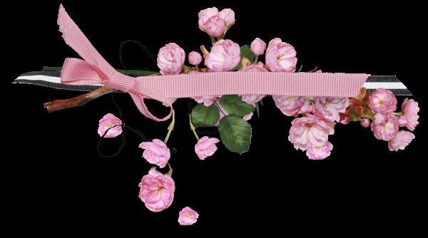 Barre de séparation, couleur rose