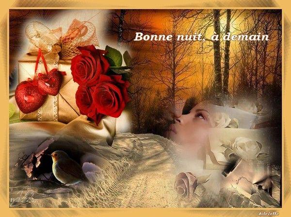 Bonne nuit, à demain, avec roses rouges et couple