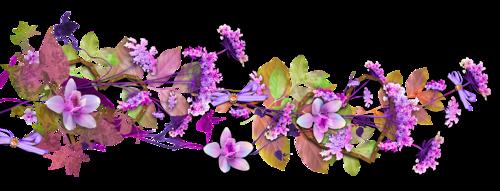 Barre de séparation fleurie