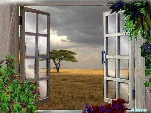 Fenêtre sur champ
