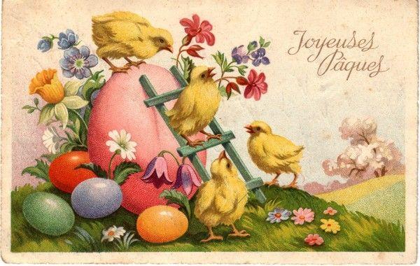 Joyeuses Pâques poussins et œuf
