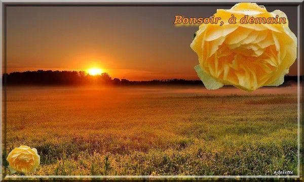 Bonsoir, à demain coucher de soleil, rose jaune