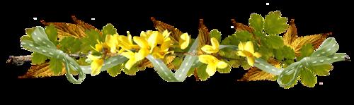 Barre de séparation fleurs jaunes