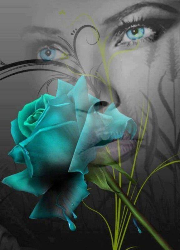 Rose bleue, fond femme